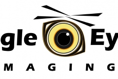 Eagle Eye Imaging Logo